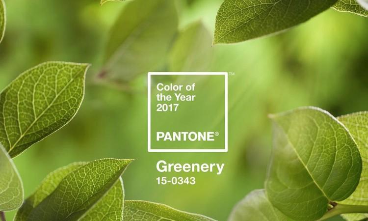 Цвет 2017 года