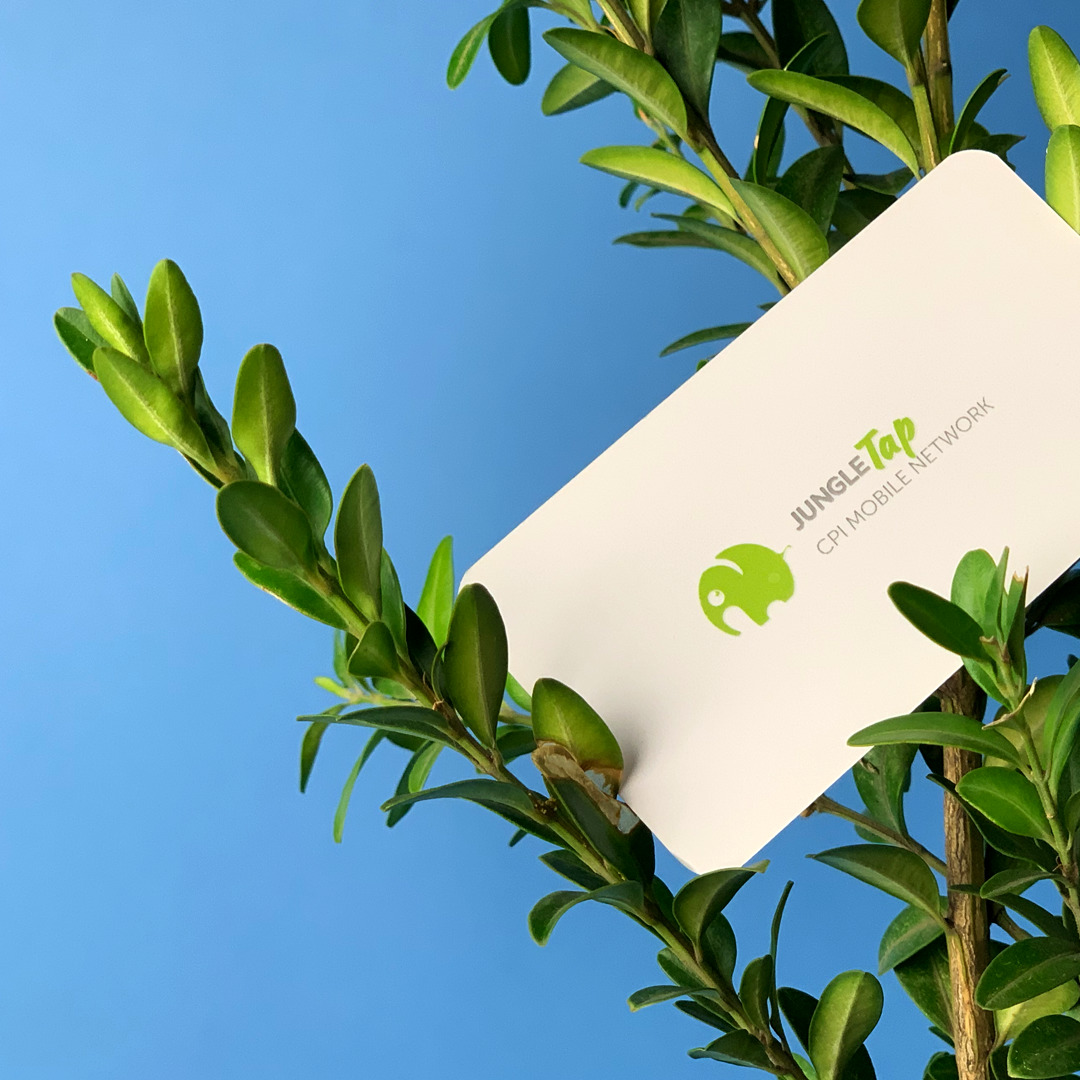 Цифровая печать визиток